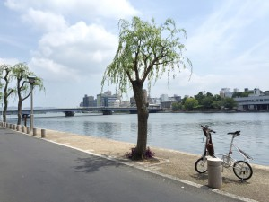 松江での5LINKS2